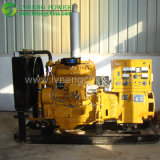 Hot Sale Made in China Natural Gas Generator with Top Brand