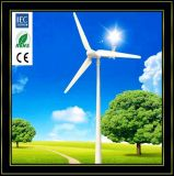 Wind Generator 1kw, Home Use Wind Turbine With 3 Years Free Maintainance