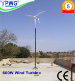 High Efficiency Wind Generator 600W Wind Power