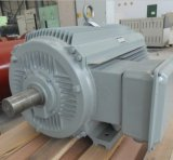 8kw Permanent Magnet Wind/ Hydro Generator