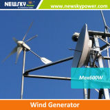 800W 1000W 1kw 1200W Wind Generator for House Use